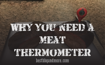 Why you need a Meat Thermometer